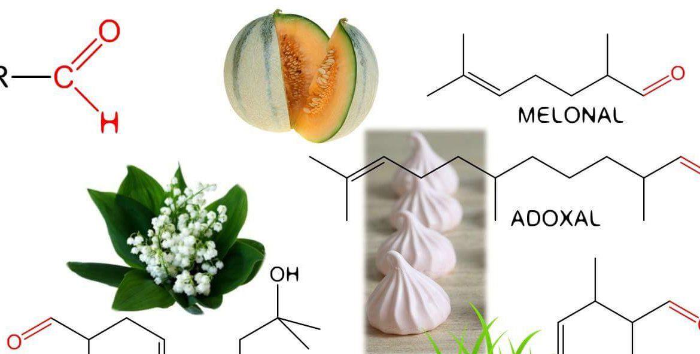Безопасни ли са съставките в парфюмите