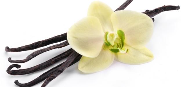 Ванилия - момент на сладост и нежност