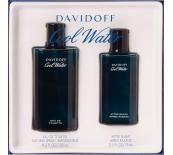 Davidoff Cool Water Подаръчен комплект за мъже